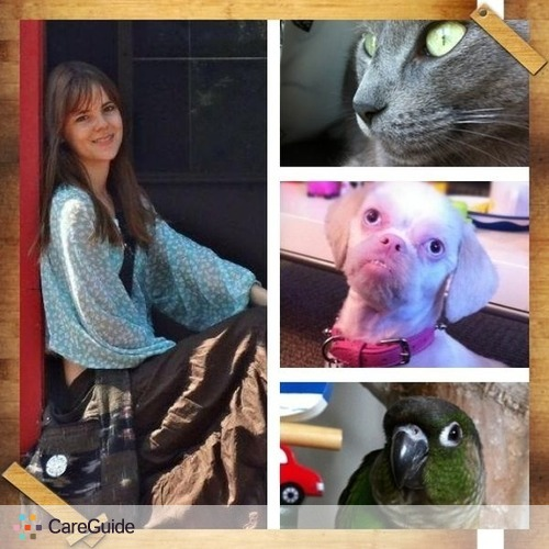 Pet Care Provider Laura Hamilton's Profile Picture