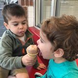 Energetic Sitter Sought for 2 young boys