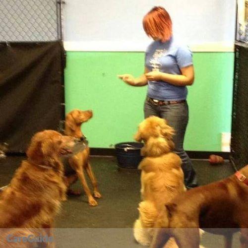 Pet Care Provider Isabella Zarazua's Profile Picture