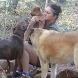 Dog Walker, Pet Sitter, Kennel in Mesa