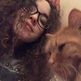 Petersburg Pet Groomer Interested In Job Opportunities