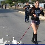 Delray Beach Dog Trainer Seeking Job Opportunities