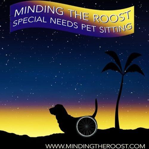Pet Care Provider Karen Smith Gallery Image 3