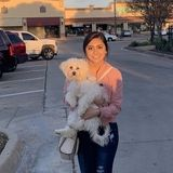 Looking For a Dog/Cat Sitter Opportunity in Dallas, Tx.