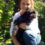 Dog Walker, Pet Sitter in Richmond