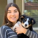 For Hire: Reliable Pet Sitter in Anthem, Arizona