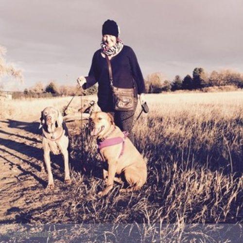 Pet Care Provider Martha K's Profile Picture