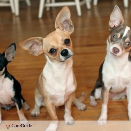 Pet Care Provider F H's Profile Picture
