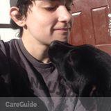 Dog Walker, Pet Sitter in Mckinney