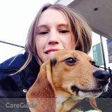 Dog Walker, Pet Sitter in Hingham