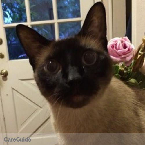 Pet Care Provider Joseph Alsarraf's Profile Picture