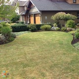 Cutting Edge Lawn and Garden