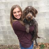 Experienced and Responsible Pet Sitter