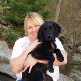 Dog Walker, Pet Sitter in Decatur