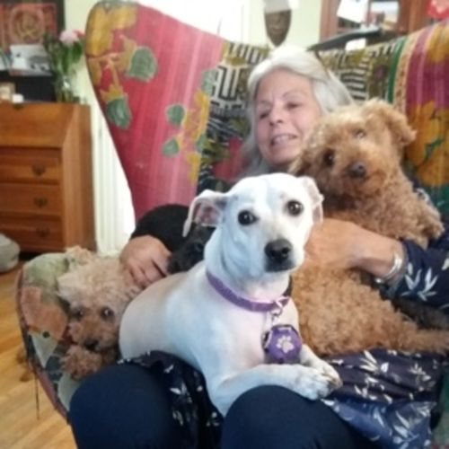 Pet Care Provider Jan Ferguson's Profile Picture