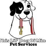 Affordable and Reliable pet care service