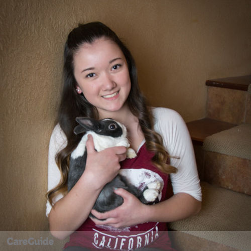 Pet Care Provider Ellie Chen's Profile Picture