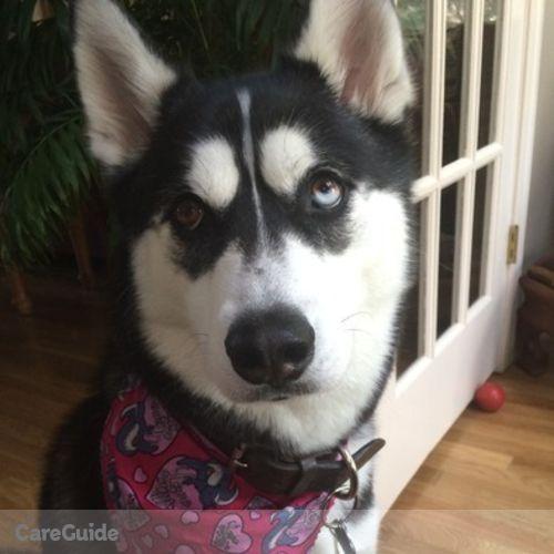 Pet Care Provider Samantha Creech's Profile Picture