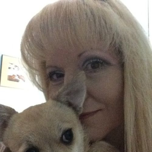Pet Care Provider Susan F's Profile Picture