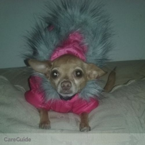 Pet Care Provider Julita Matuk's Profile Picture