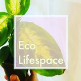 EcoLifeSpace is eco friendly natural cleaning with zero-waste practices.