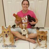 Dog Walker, Pet Sitter in Clearwater