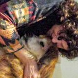 Available: Skilled Dog Sitting Professional in Setauket, New York