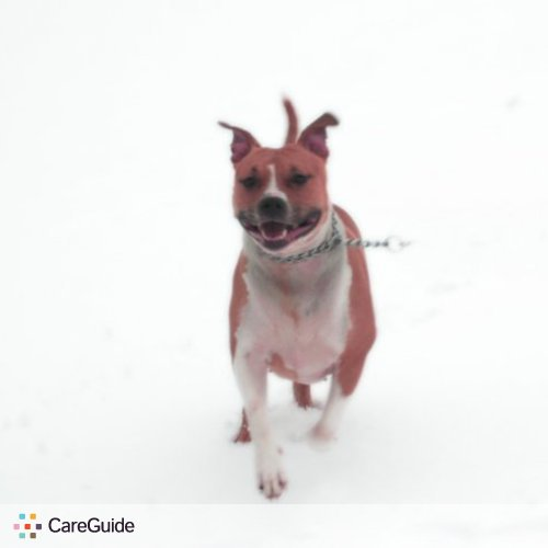 Pet Care Provider Cassandra W's Profile Picture