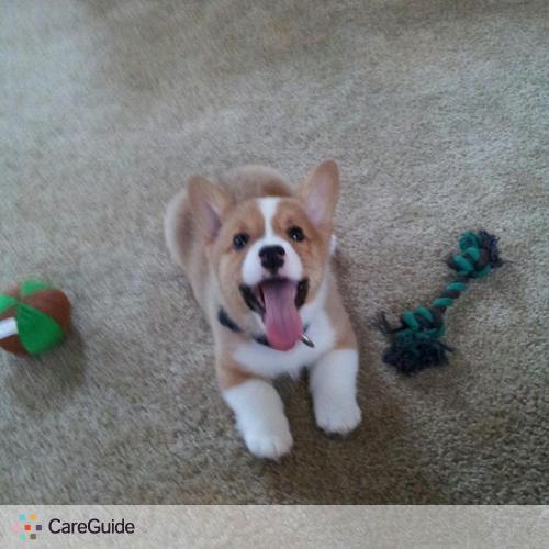Pet Care Provider Britanny Lewis's Profile Picture