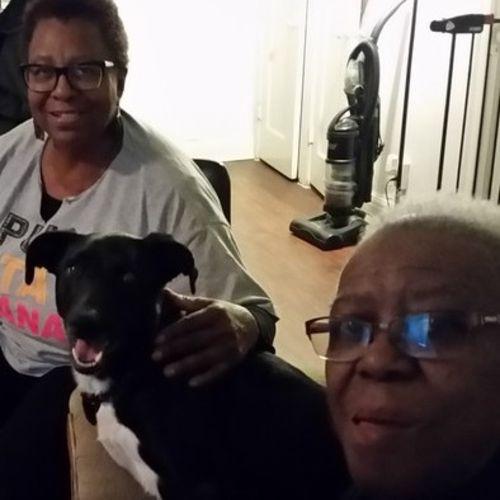 Pet Care Provider Mattie Dawan's Profile Picture