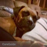 Dog Walker, Pet Sitter in Weatherford