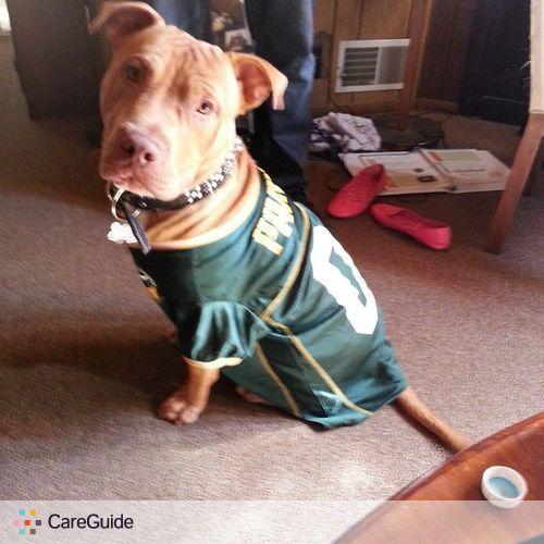 Pet Care Provider Michael Negron's Profile Picture