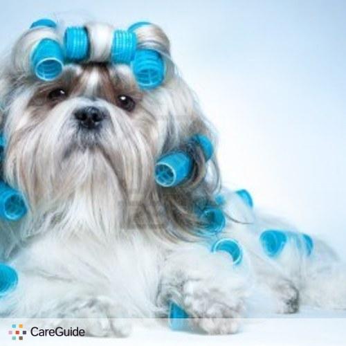 Pet Care Provider Tracy Cook's Profile Picture
