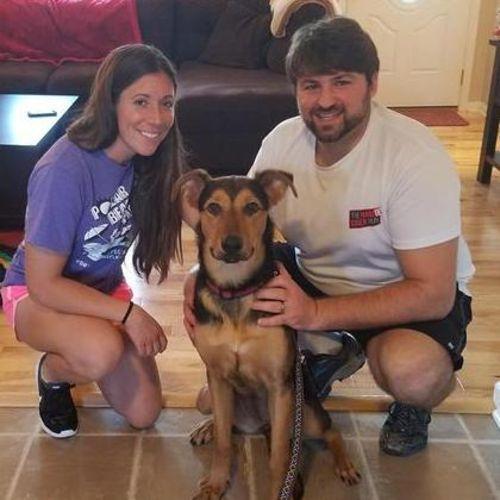Pet Care Job Amy Hunsberger's Profile Picture