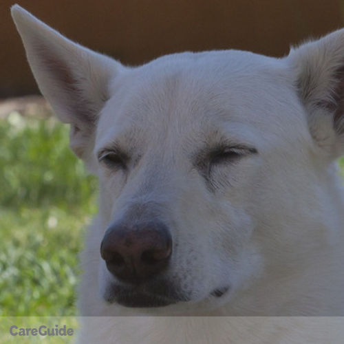 Pet Care Job Jon C's Profile Picture