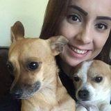 Dog Mom Walks Dogs In San Angelo
