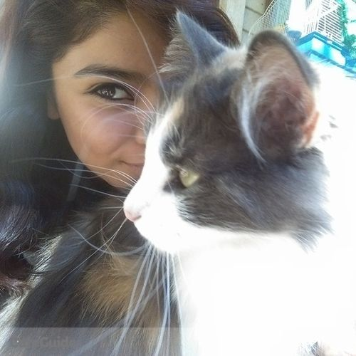 Pet Care Provider Jessica Valdez's Profile Picture