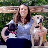 Dog Walker, Pet Sitter in Highlands Ranch