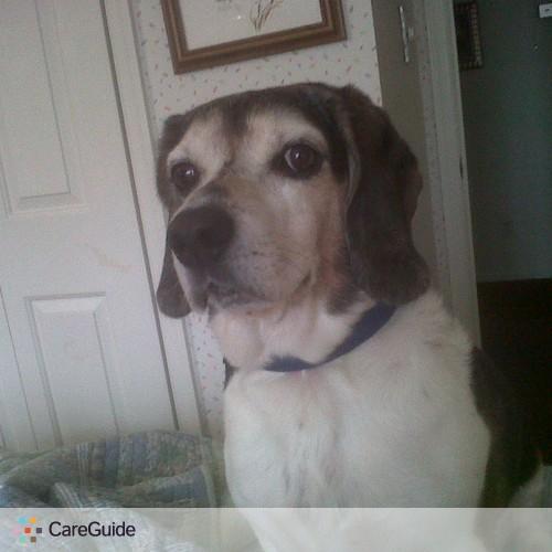 Pet Care Provider Erin H's Profile Picture