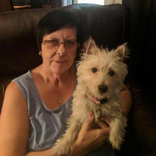House Sitter Provider Diana Conover's Profile Picture