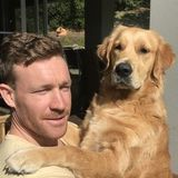 Im Aussie Ben : ) Dog walker, pet sitter, in Saint-Lambert, Quebec