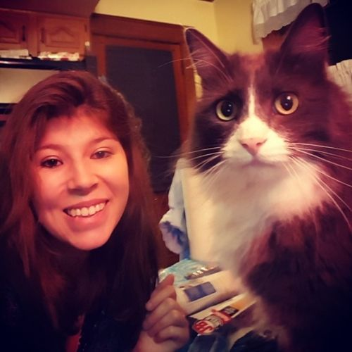 Pet Care Provider Michele W's Profile Picture