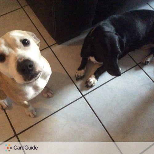 Pet Care Job Rachael H's Profile Picture