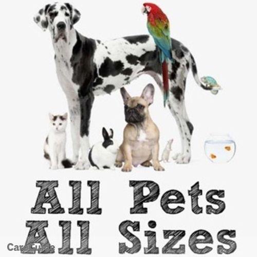 Pet Care Provider Jo-lynn B's Profile Picture