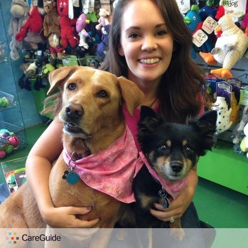 Pet Care Provider Kiersten Brown's Profile Picture