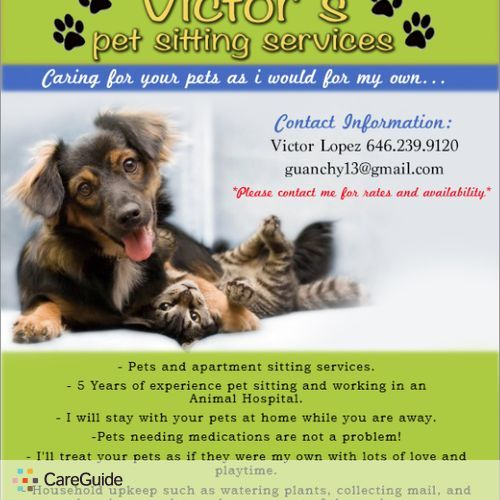 Pet Care Provider Victor Lopez's Profile Picture