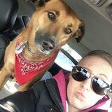 Job Posting: Cochrane, Alberta - Regular Pet Sitting Required