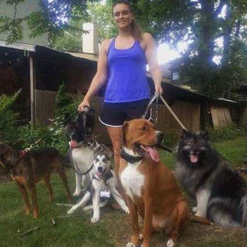 Pet Care Provider Shelby R's Profile Picture