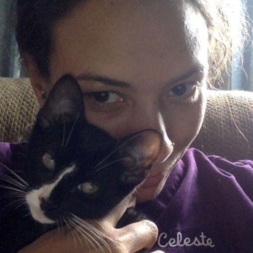 Pet Care Provider Celeste Loetz's Profile Picture