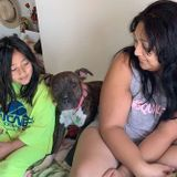 Buckeye Pet Service Provider Looking For Work in Arizona